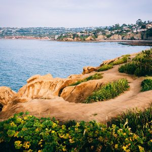 Looking from La Jolla to La Jolla Shores